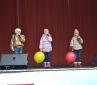 «На воздушном шарике» парк Фили